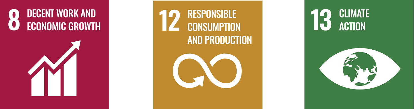 Sustainable Development Goals 8, 12 & 13