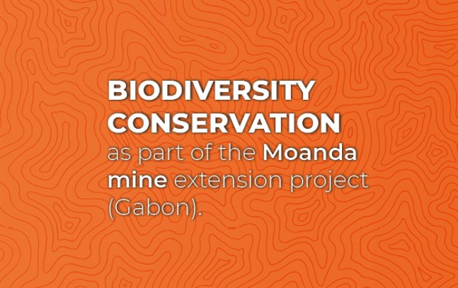 Biodiversity conservation as part of the Moanda mine extension project (Gabon)