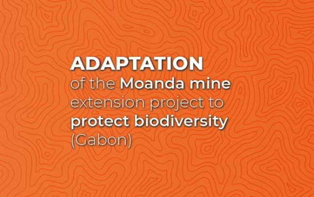Adaptation of the Moanda mine extension project to protect biodiversity (Gabon)